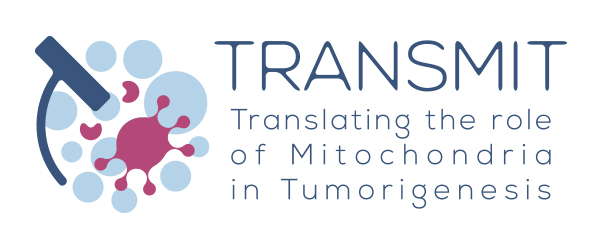 Image of (464396) 15 FULL FELLOWSHIPS FOR PATIENTS OR REPRESENTATIVES OF PATIENTS' ORGANISATIONS TO ATTEND THE TRANSMIT SYMPOSIUM 2020 (JANUARY 17-18, 2020, BRUSSELS, BELGIUM)