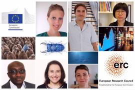 Image of (555713) ERC Starting Grants 2020: €677 million awarded to unravel scientific mysteries