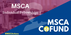 msca-if-cofund.png