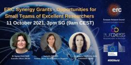 Image of (690163) ERC Synergy Grants - Opportunities for Small Teams of Excellent Researchers
